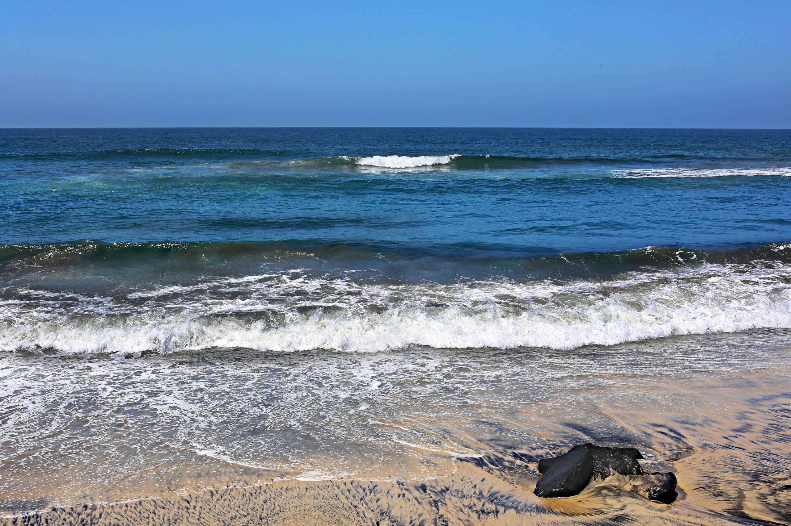 Leapord Shore by Rich J. Velasco