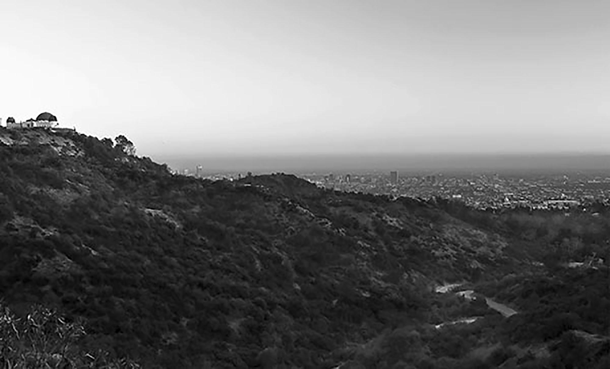 Observe LA by Rich J. Velasco