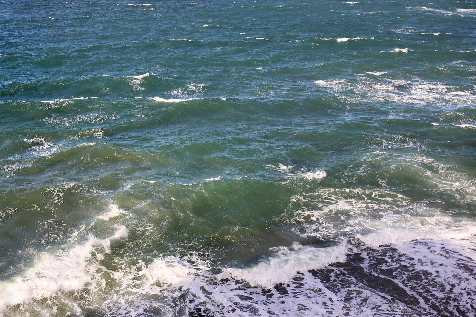Ocean Delights by Rich J. Velasco